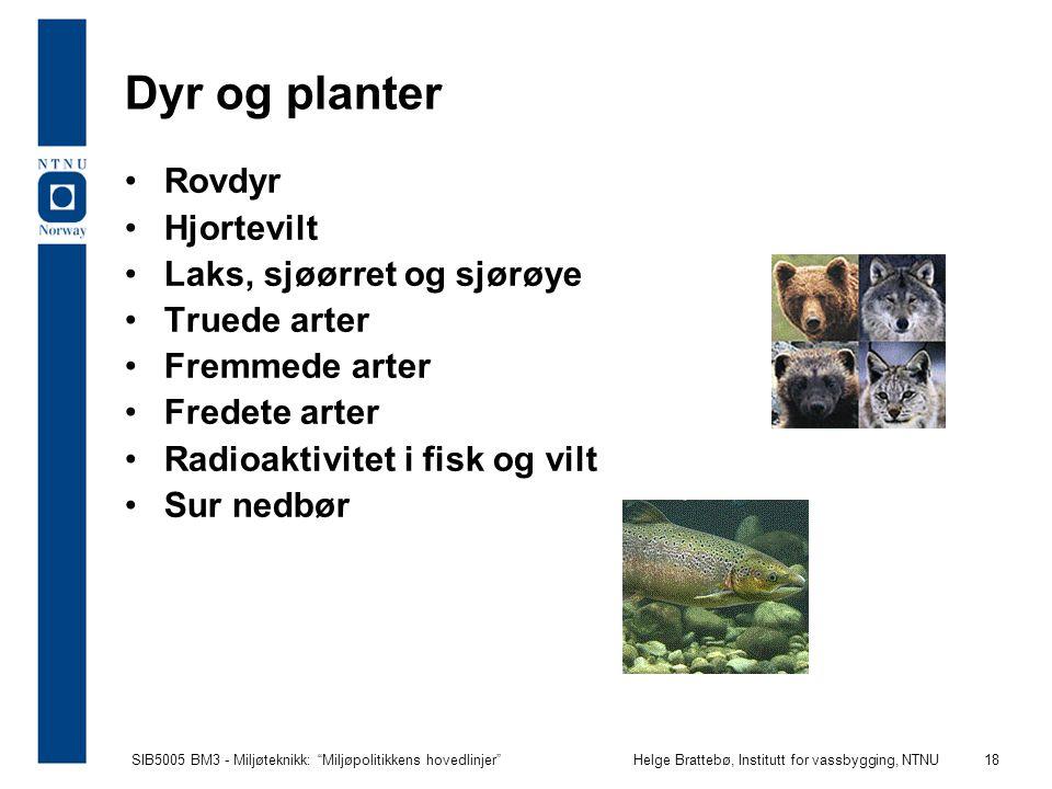 Dyr og planter Rovdyr Hjortevilt Laks, sjøørret og sjørøye