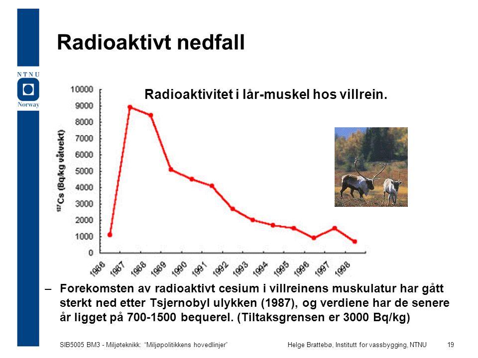Radioaktivt nedfall Radioaktivitet i lår-muskel hos villrein.