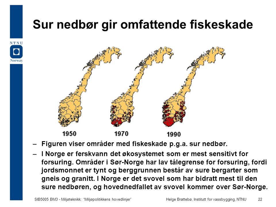 Sur nedbør gir omfattende fiskeskade