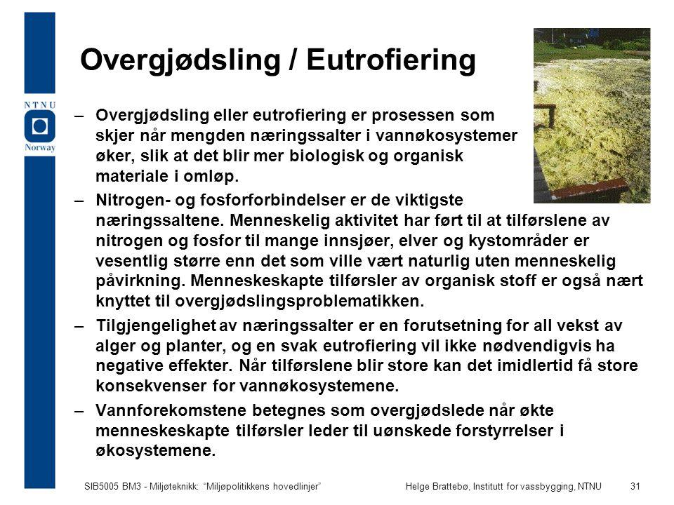 Overgjødsling / Eutrofiering