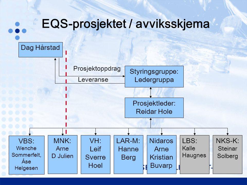 EQS-prosjektet / avviksskjema