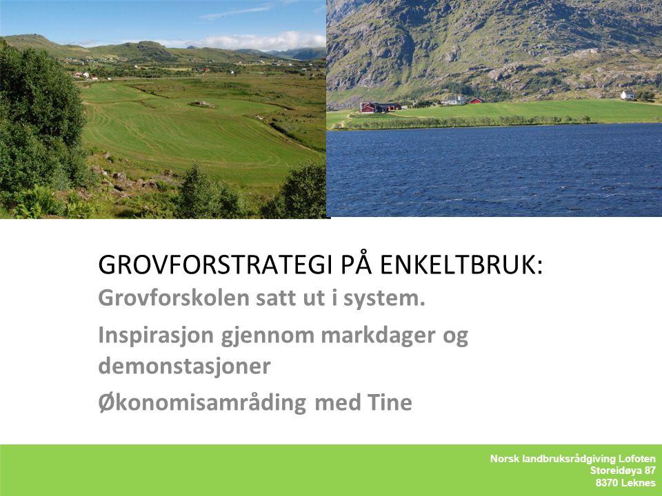 GROVFORSTRATEGI PÅ ENKELTBRUK: Grovforskolen satt ut i system.
