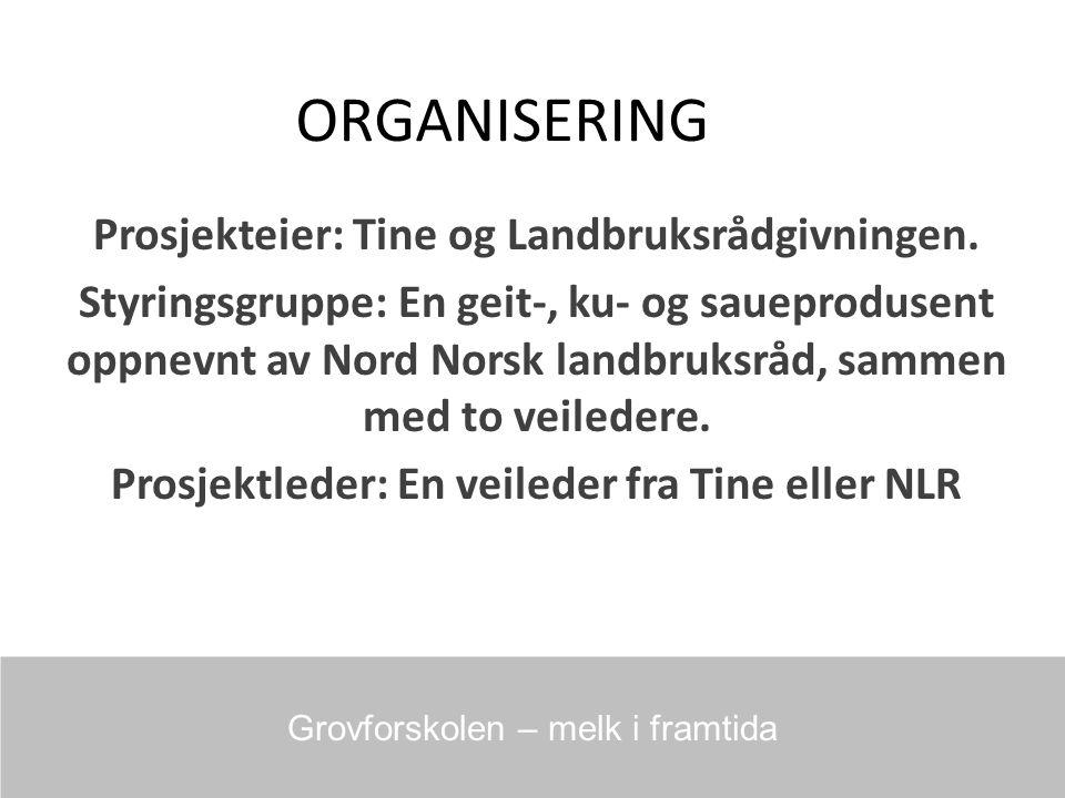 ORGANISERING Prosjekteier: Tine og Landbruksrådgivningen.