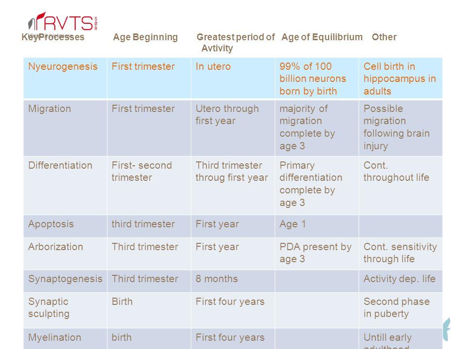 99% of 100 billion neurons born by birth