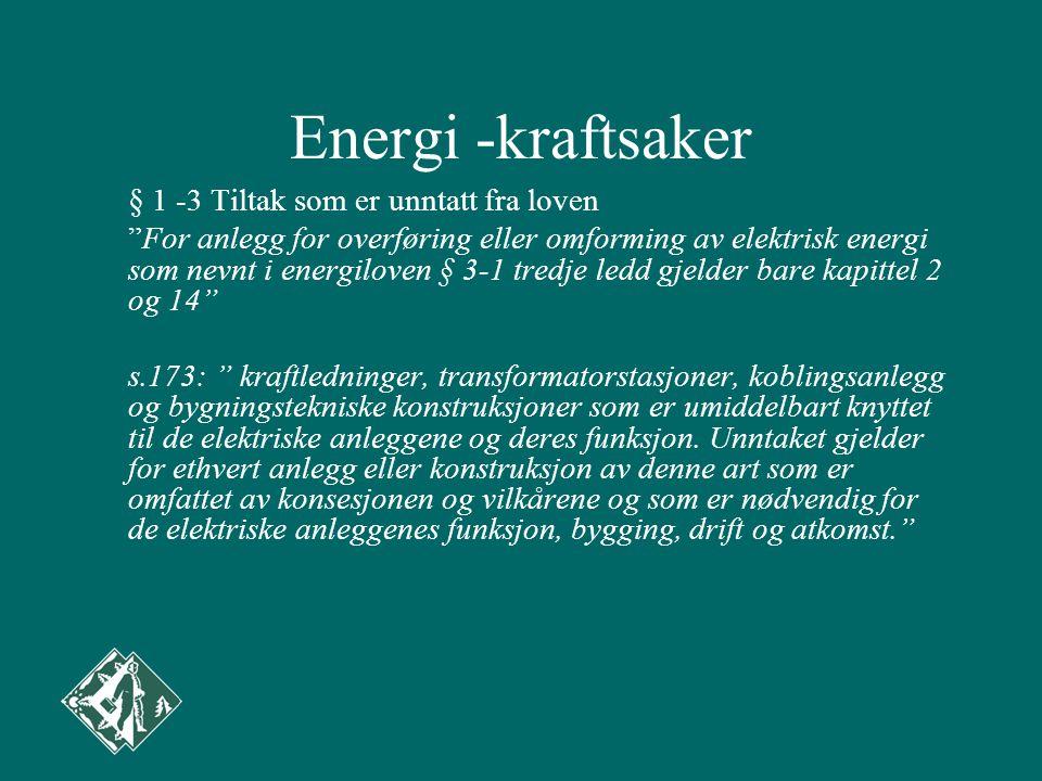 Energi -kraftsaker
