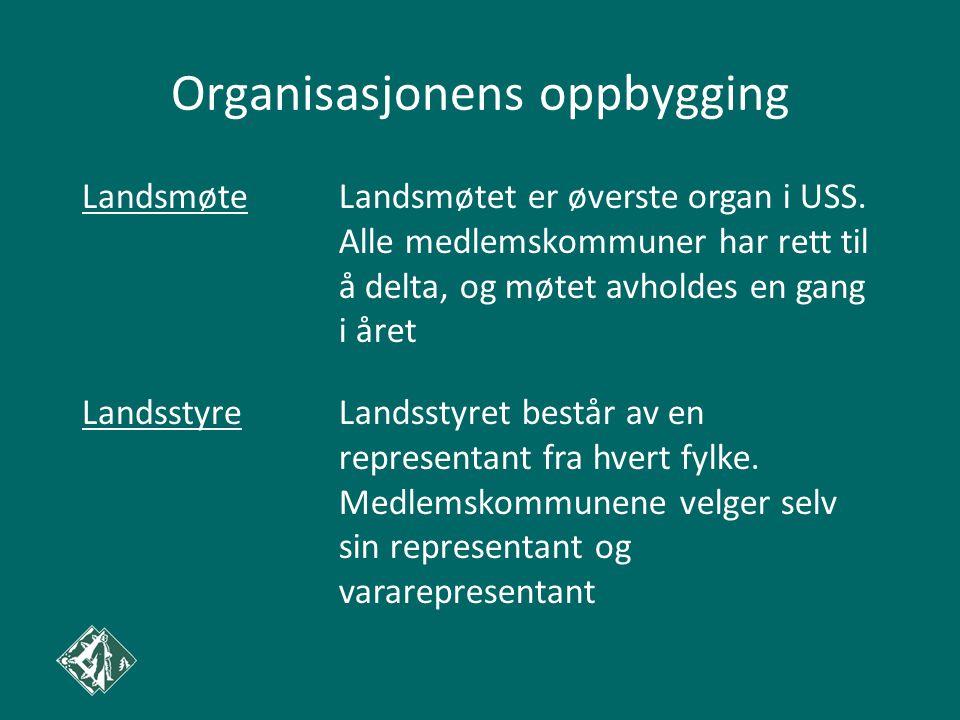 Organisasjonens oppbygging