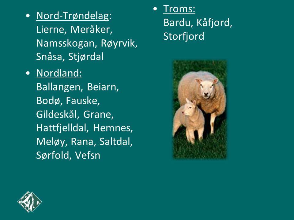Troms: Bardu, Kåfjord, Storfjord