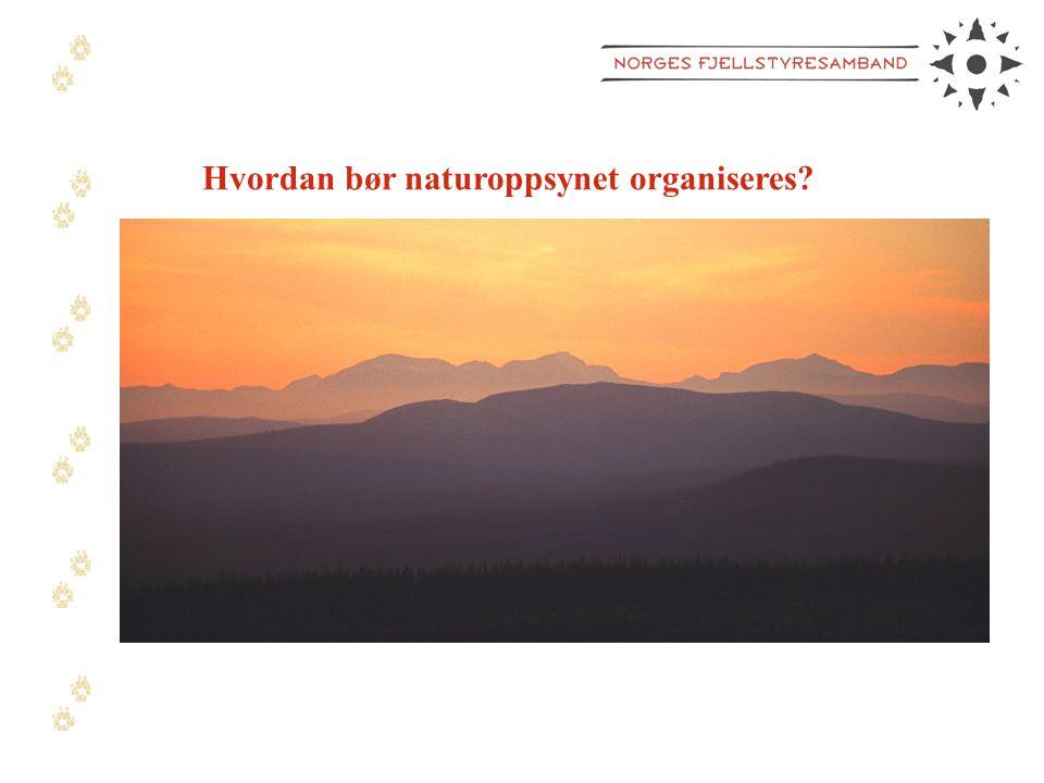 Hvordan bør naturoppsynet organiseres