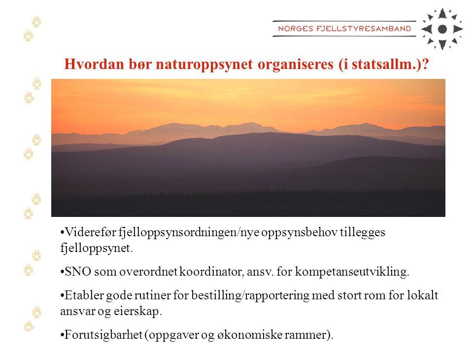 Hvordan bør naturoppsynet organiseres (i statsallm.)