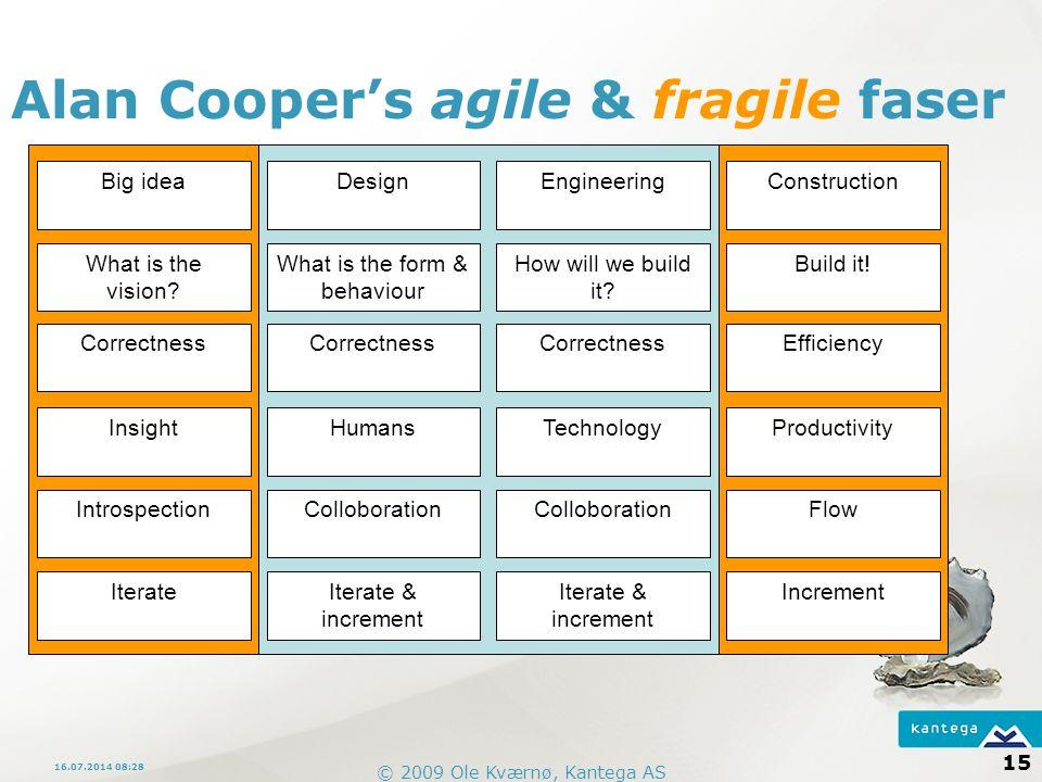 Alan Cooper's agile & fragile faser