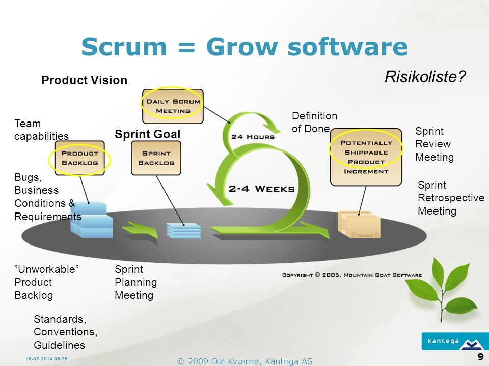 Scrum = Grow software Risikoliste Product Vision Sprint Goal