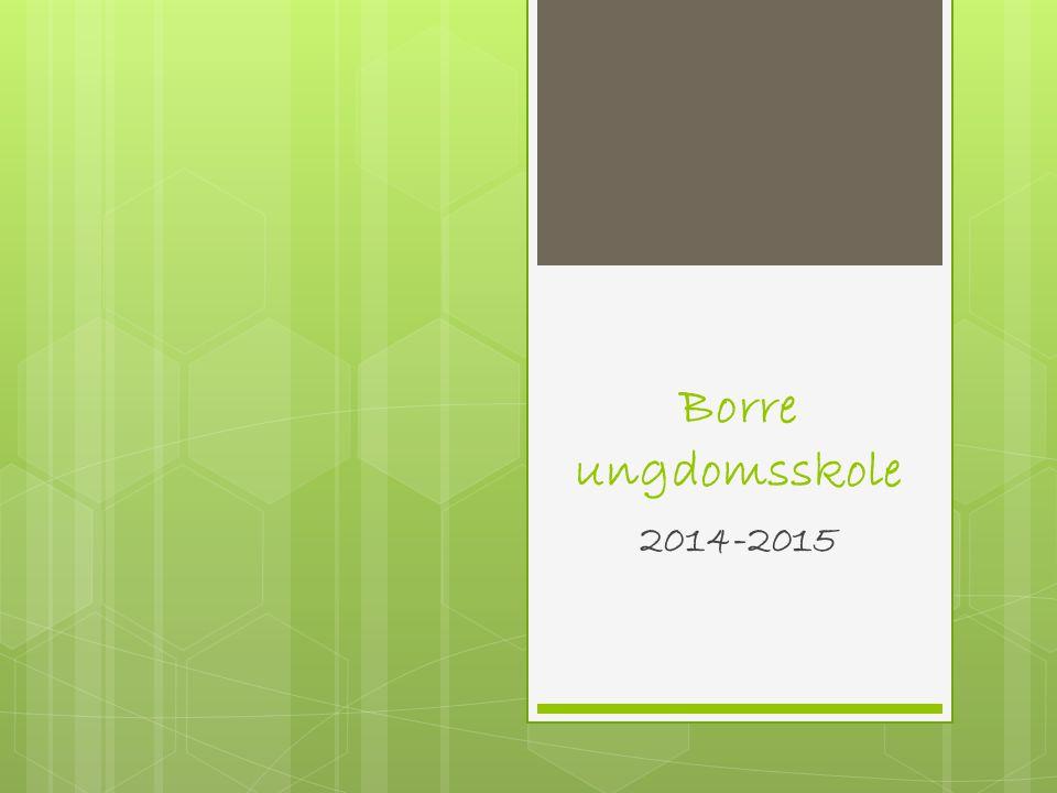 Borre ungdomsskole 2014-2015