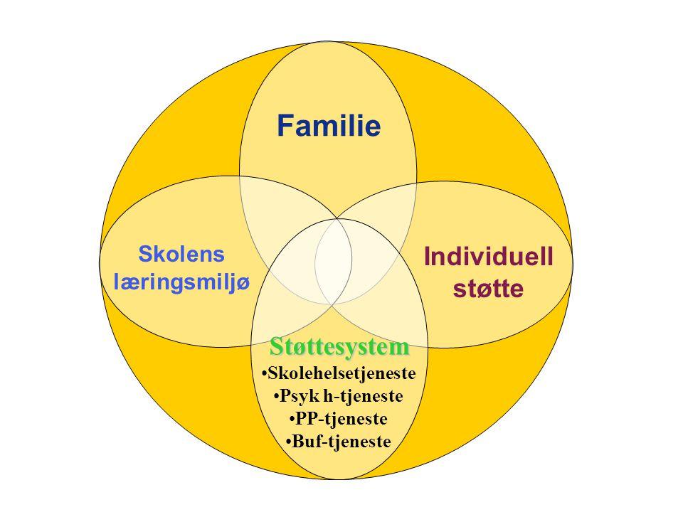 Familie Individuell støtte Støttesystem Skolens læringsmiljø