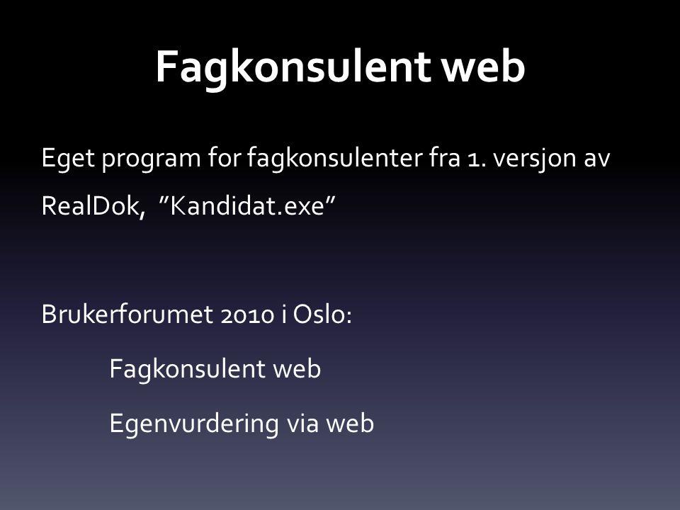 Fagkonsulent web