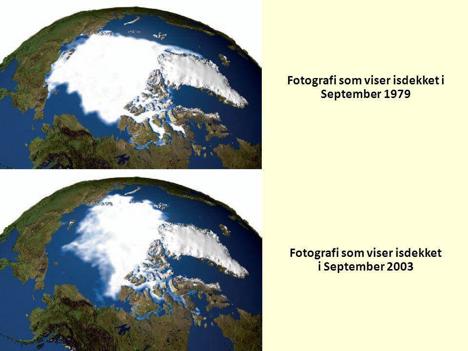 Fotografi som viser isdekket i September 1979