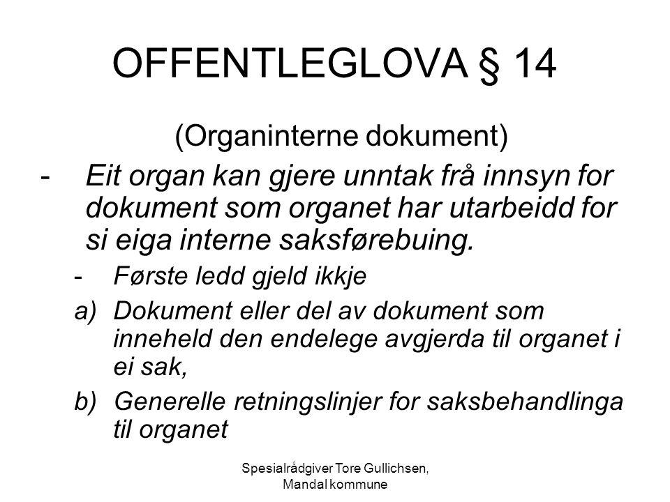Spesialrådgiver Tore Gullichsen, Mandal kommune