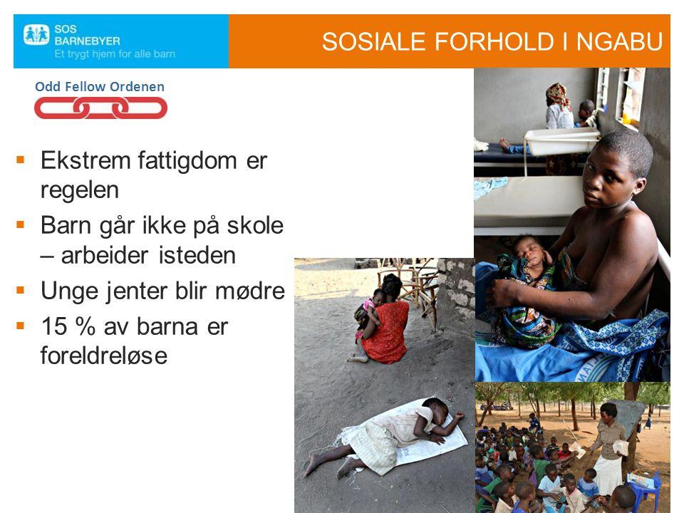 SOSIALE FORHOLD I NGABU
