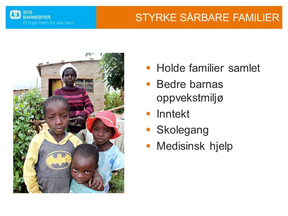 STYRKE SÅRBARE FAMILIER
