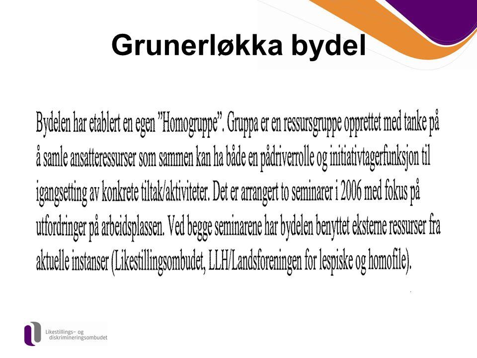 Grunerløkka bydel Etter det vi har funnet, den eneste bydelen som rapporterer på Homofile I Oslo kommune.
