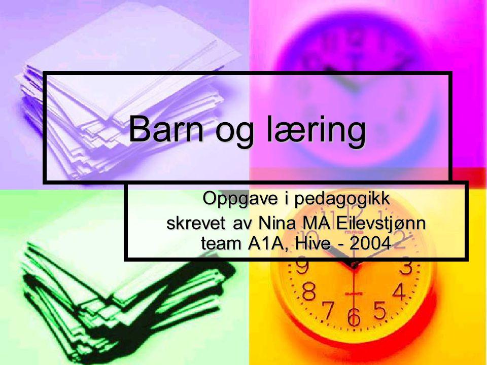 skrevet av Nina MA Eilevstjønn team A1A, Hive - 2004