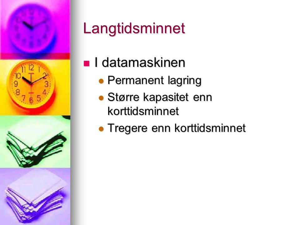 Langtidsminnet I datamaskinen Permanent lagring