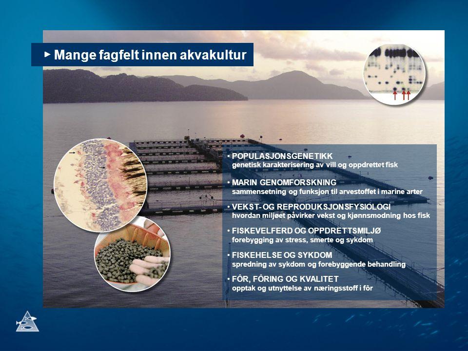 ▶ Mange fagfelt innen akvakultur