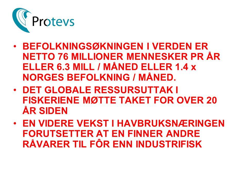 BEFOLKNINGSØKNINGEN I VERDEN ER NETTO 76 MILLIONER MENNESKER PR ÅR ELLER 6.3 MILL / MÅNED ELLER 1.4 x NORGES BEFOLKNING / MÅNED.
