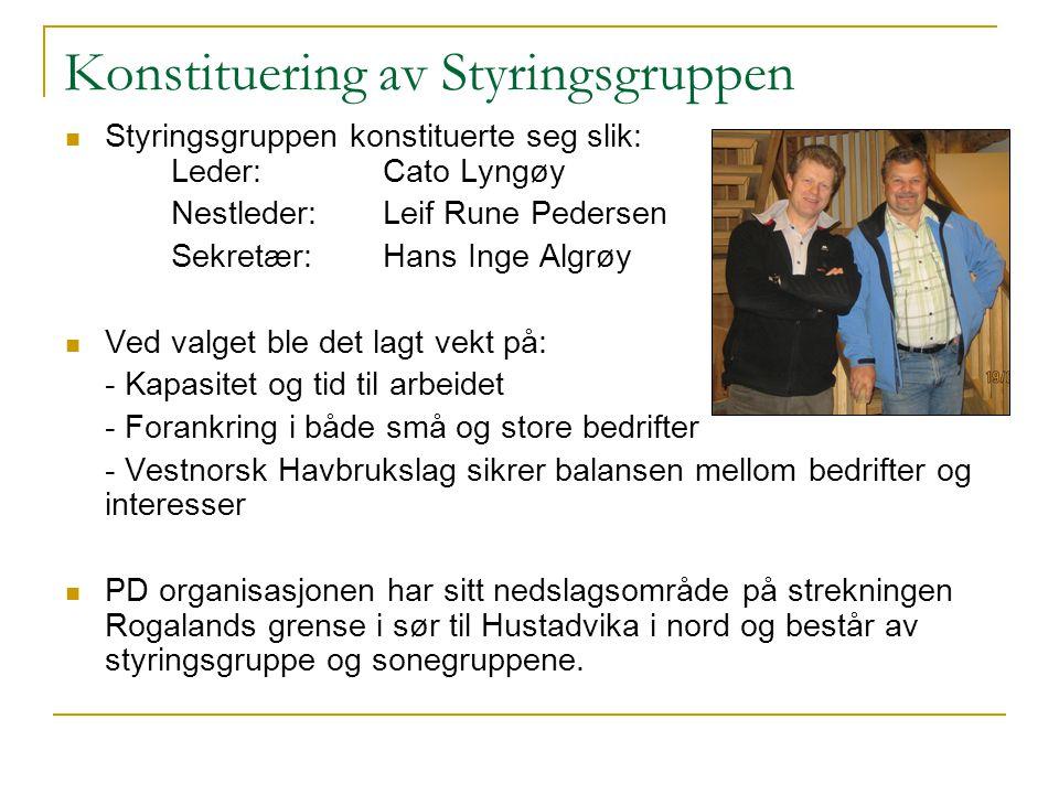 Konstituering av Styringsgruppen