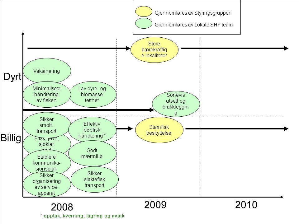 Dyrt Billig 2009 2010 2008 Gjennomføres av Styringsgruppen