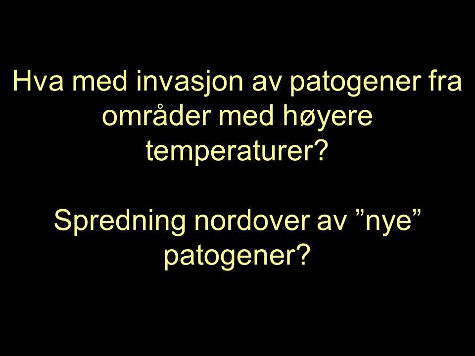Hva med invasjon av patogener fra områder med høyere temperaturer