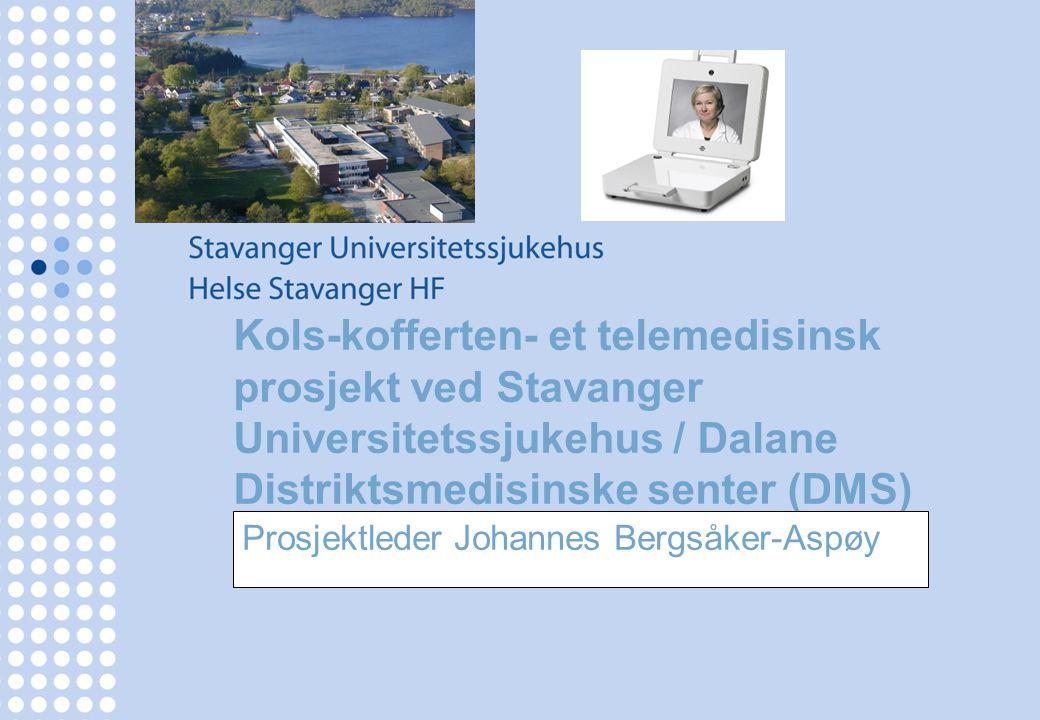Prosjektleder Johannes Bergsåker-Aspøy