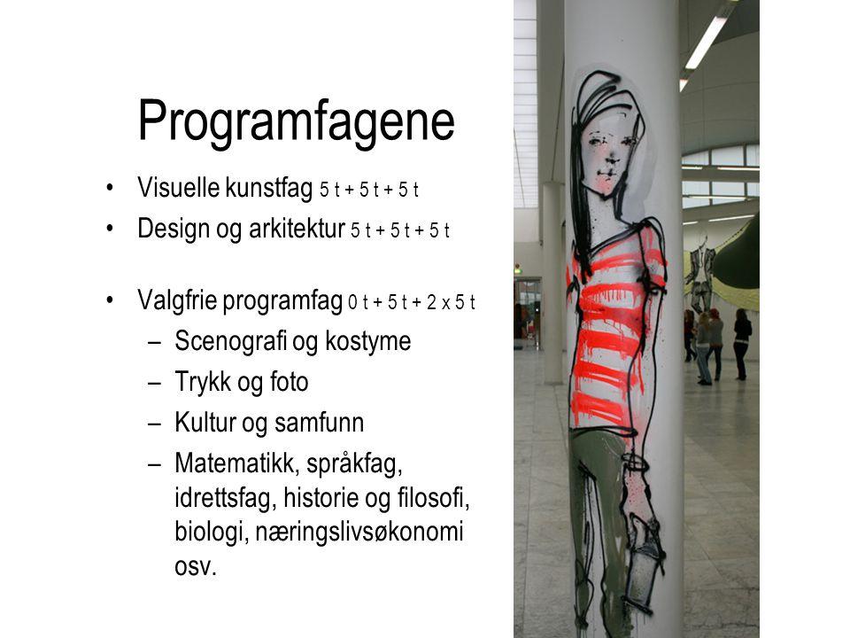 Programfagene Visuelle kunstfag 5 t + 5 t + 5 t