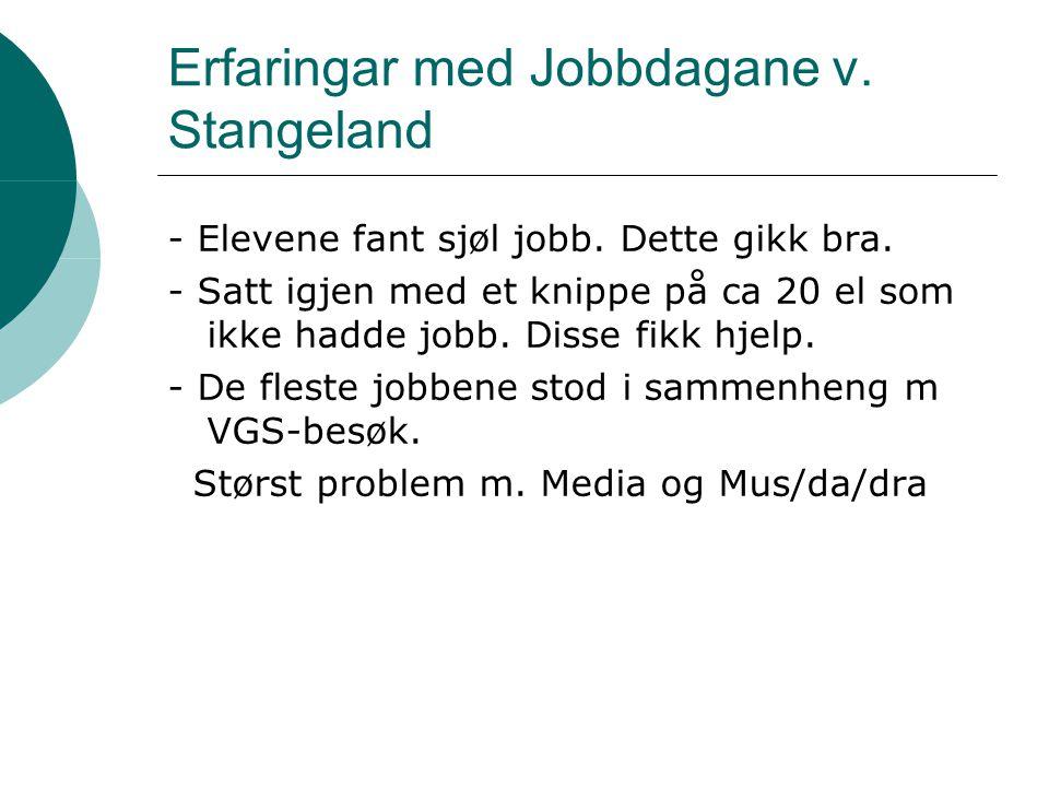 Erfaringar med Jobbdagane v. Stangeland