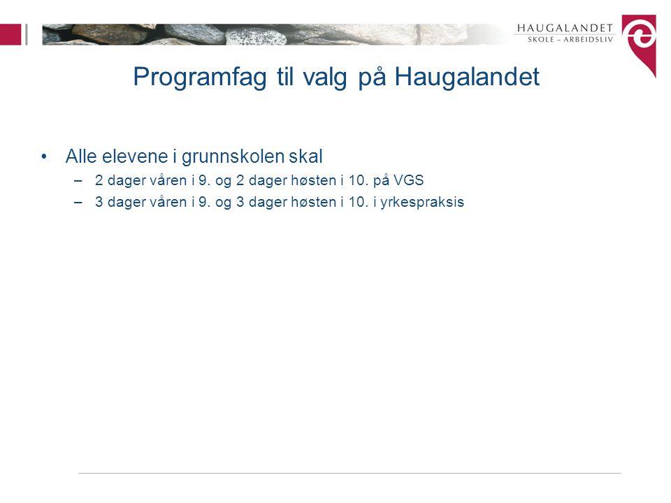 Programfag til valg på Haugalandet