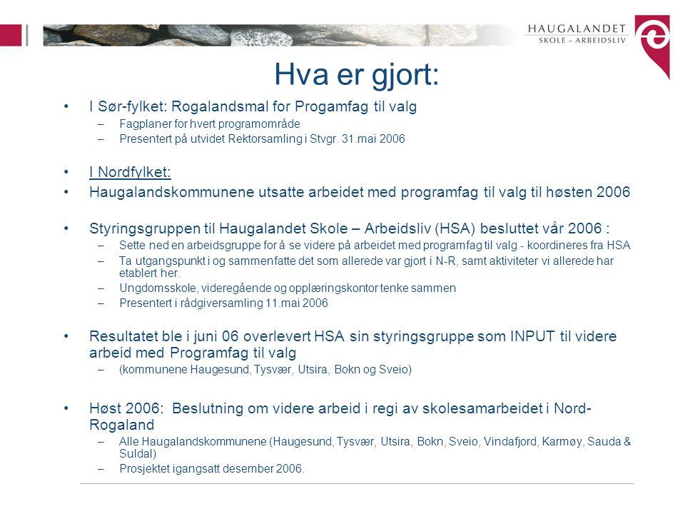 Hva er gjort: I Sør-fylket: Rogalandsmal for Progamfag til valg