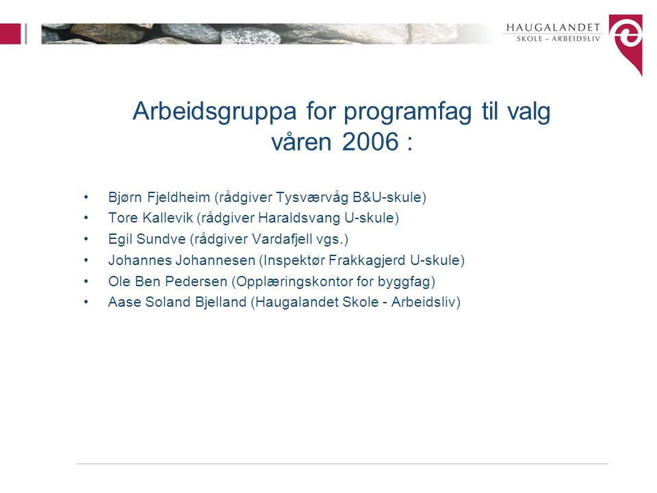 Arbeidsgruppa for programfag til valg våren 2006 :