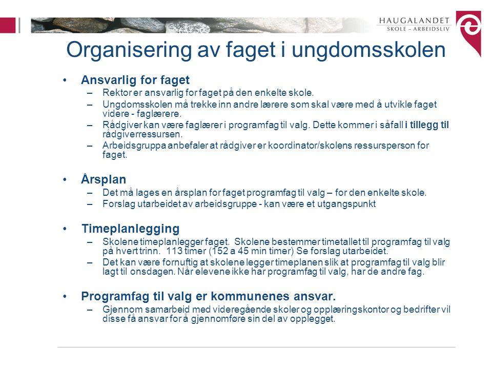 Organisering av faget i ungdomsskolen