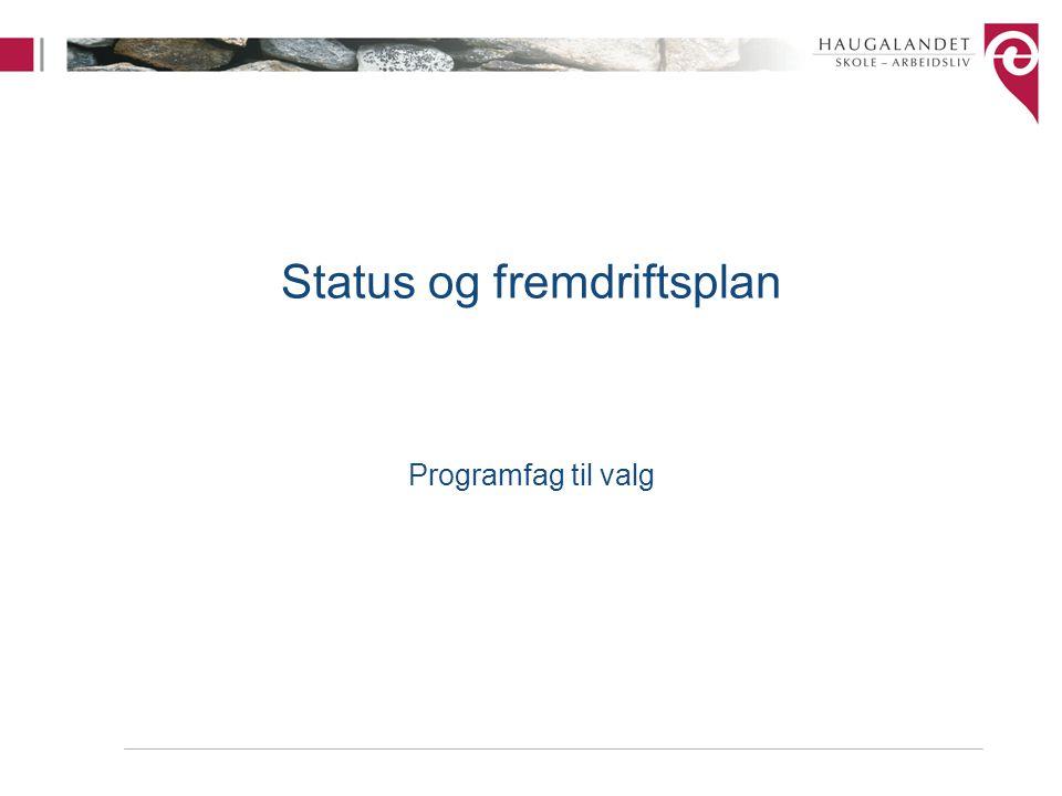Status og fremdriftsplan