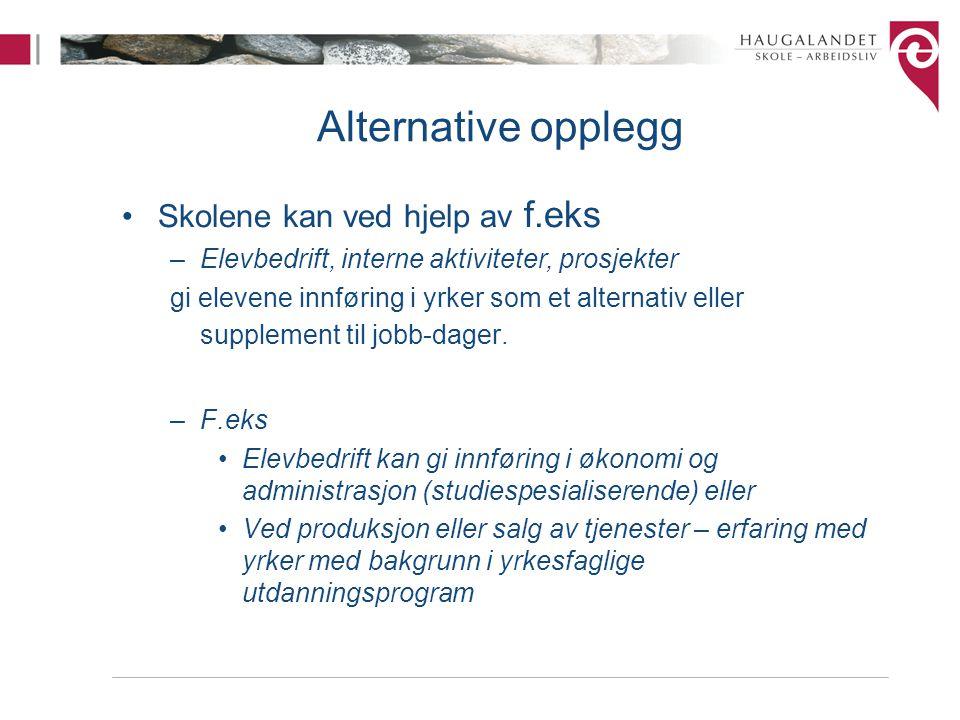 Alternative opplegg Skolene kan ved hjelp av f.eks