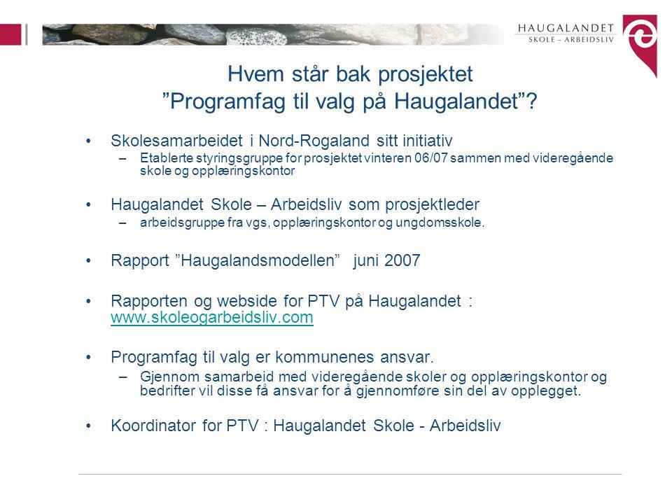 Hvem står bak prosjektet Programfag til valg på Haugalandet