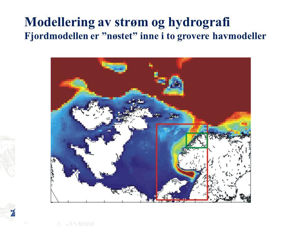 Modellering av strøm og hydrografi