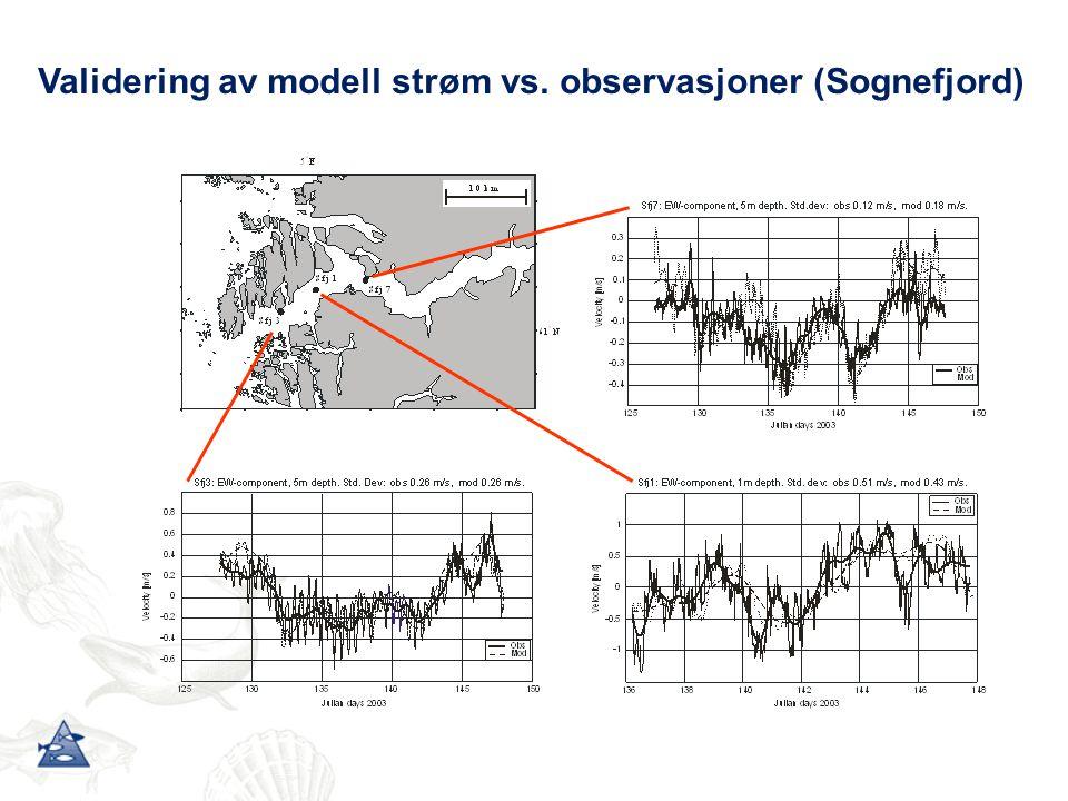 Validering av modell strøm vs. observasjoner (Sognefjord)