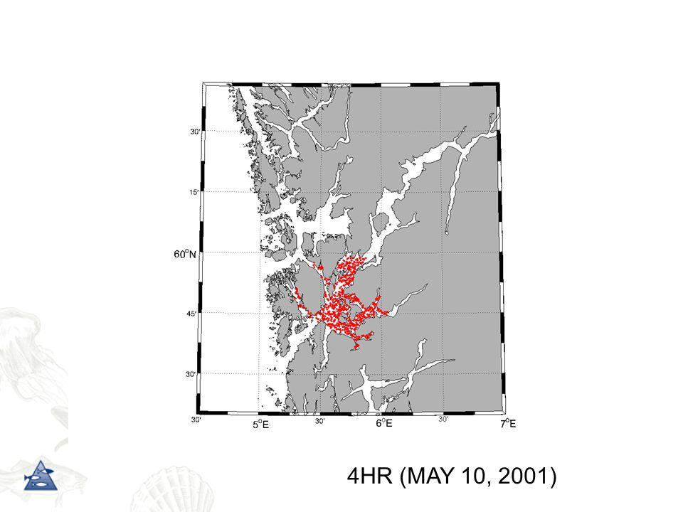 4HR (MAY 10, 2001)
