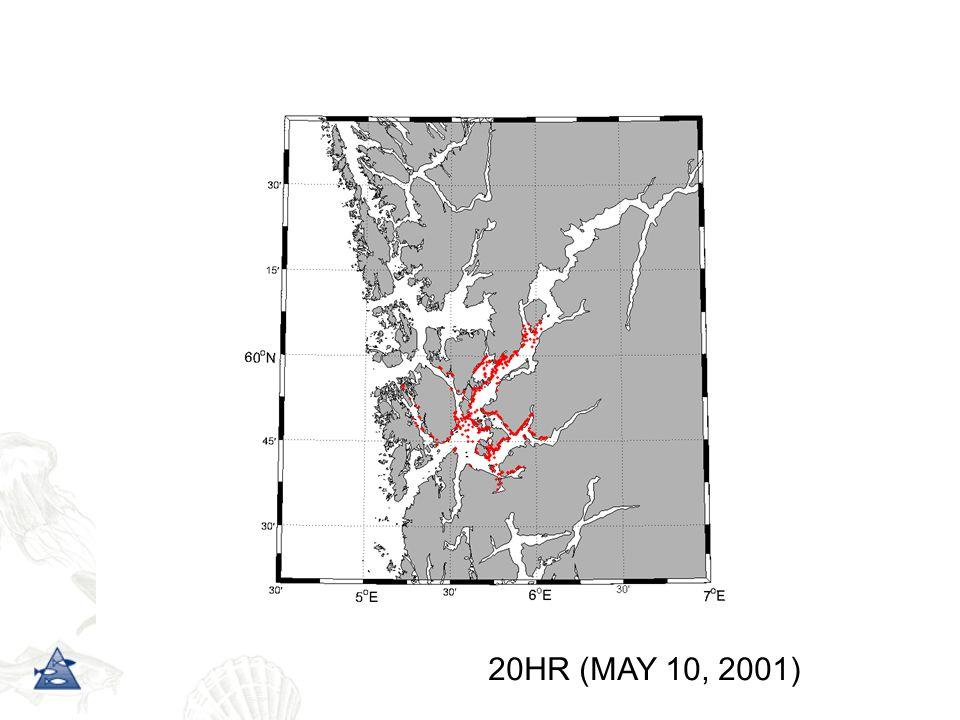 20HR (MAY 10, 2001)