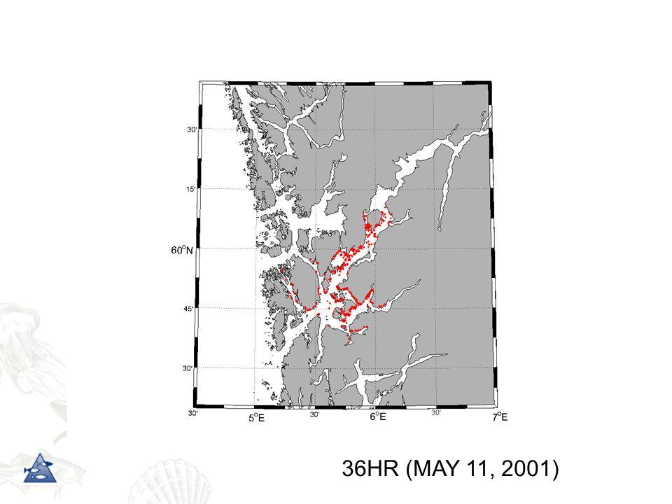36HR (MAY 11, 2001)