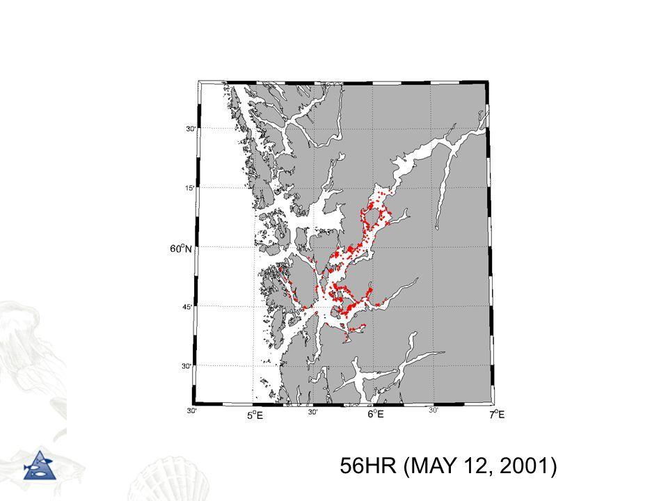56HR (MAY 12, 2001)