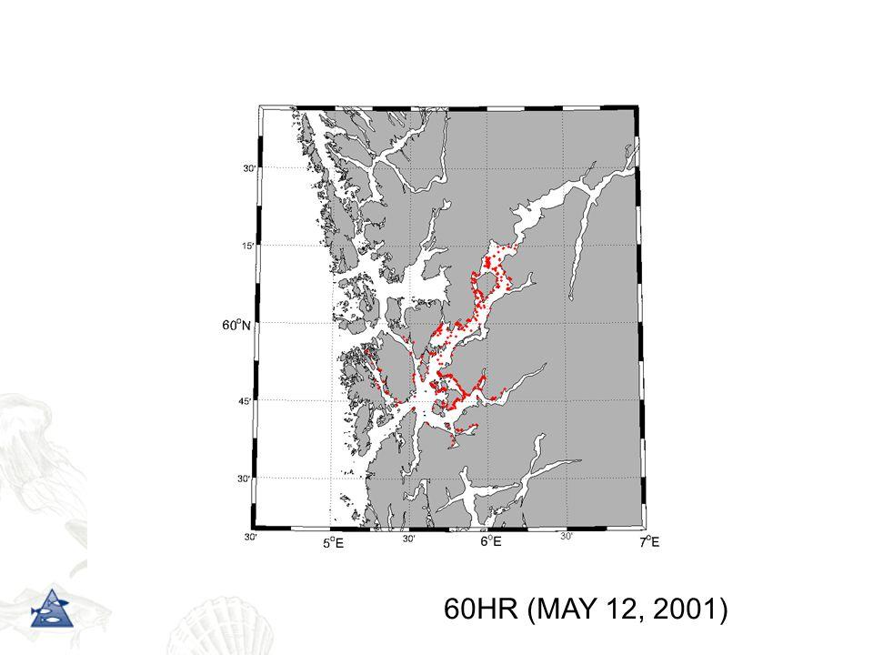 60HR (MAY 12, 2001)