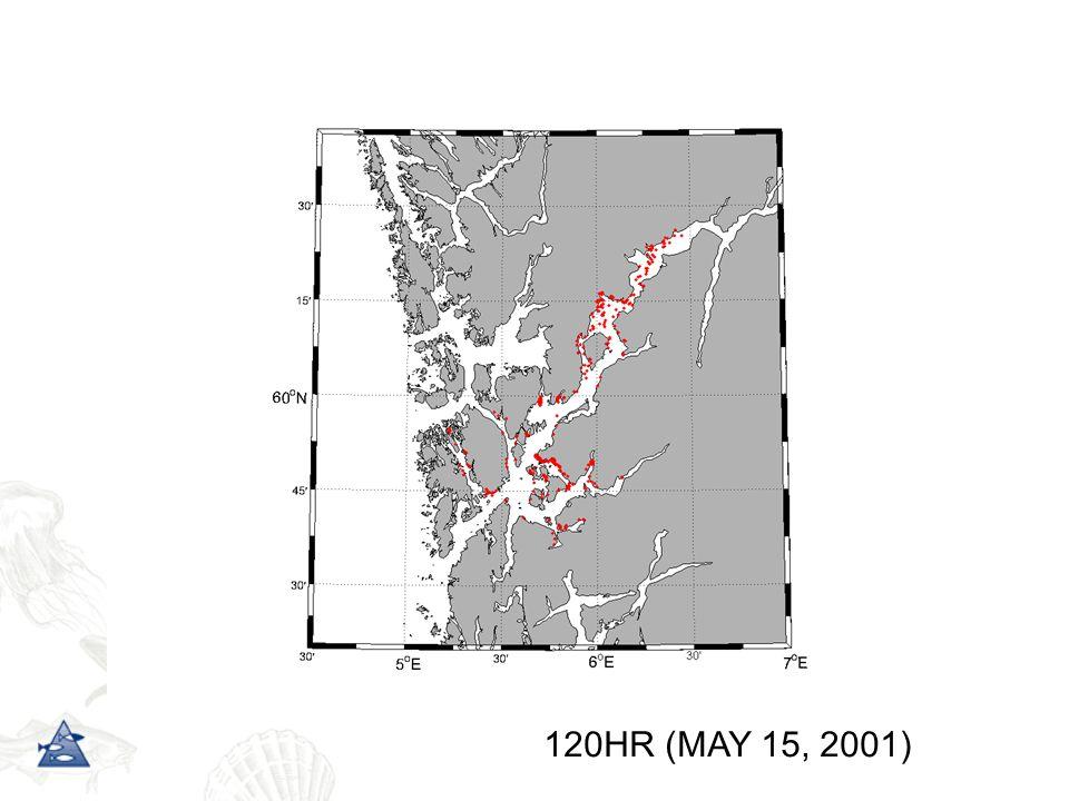 120HR (MAY 15, 2001)