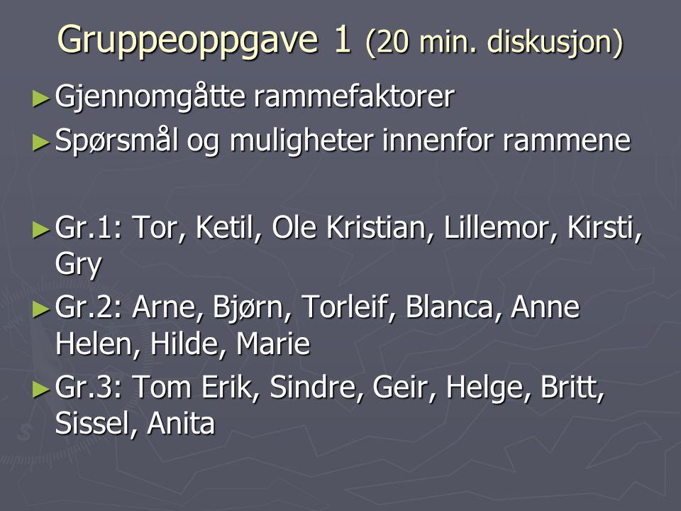 Gruppeoppgave 1 (20 min. diskusjon)