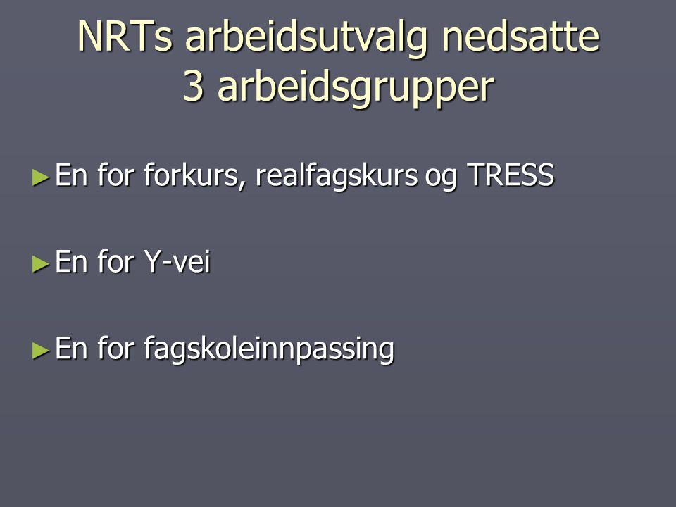 NRTs arbeidsutvalg nedsatte 3 arbeidsgrupper